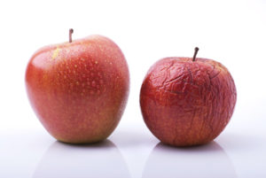 Two red apples, one fresh and one becoming dried and wrinkled.